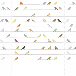 Inke Heiland Muurprint Vogels Bont - Wallprint Birds Multicolor - Wandbild Vogel Bunt